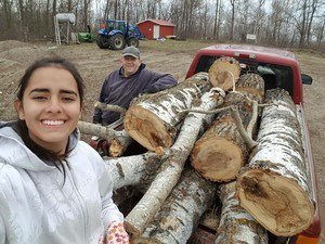 hauling wood with homestay family